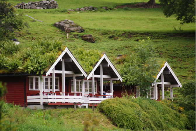 Norwegian houses with plant-covered roofs